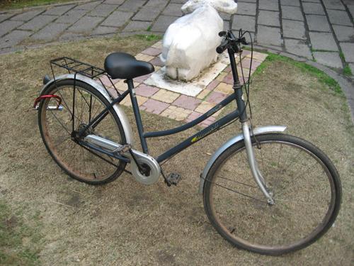chinabike2